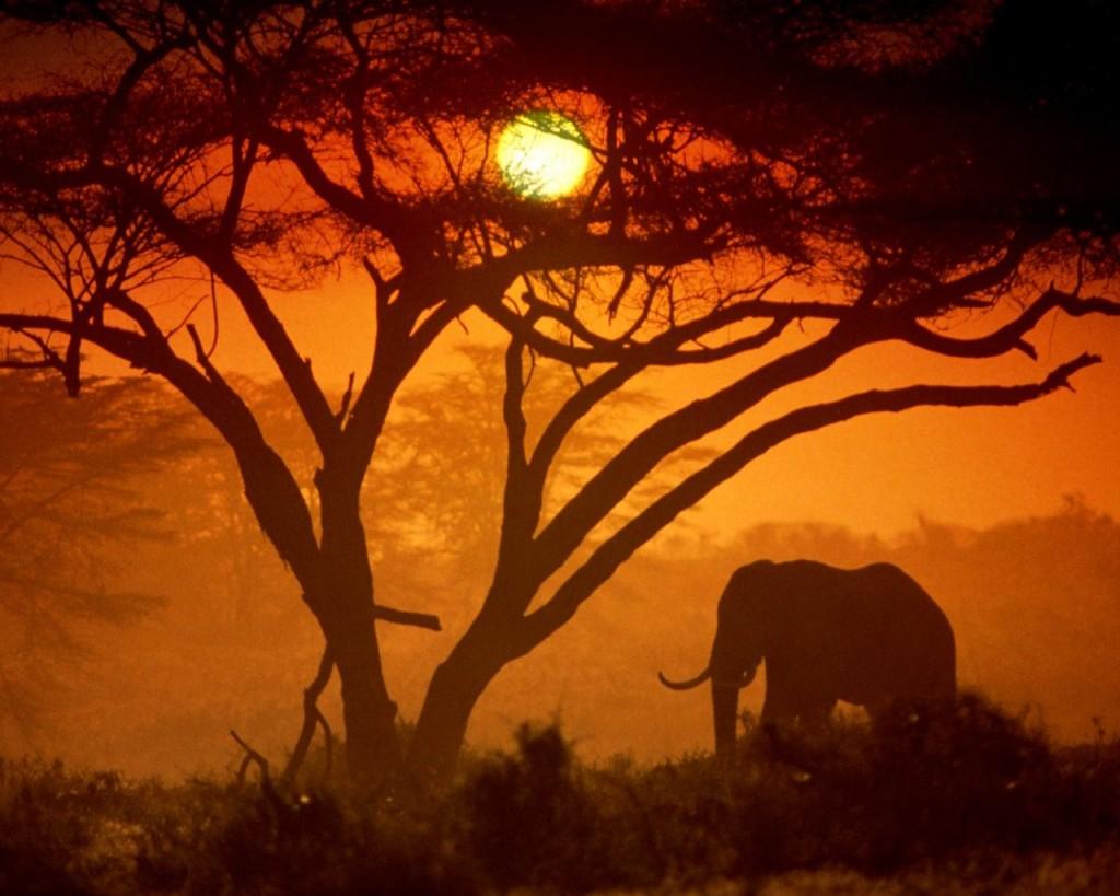 parque nacional amboseli kenia 1024x819 10 destinos imprescindibles para ser ciudadanos del mundo