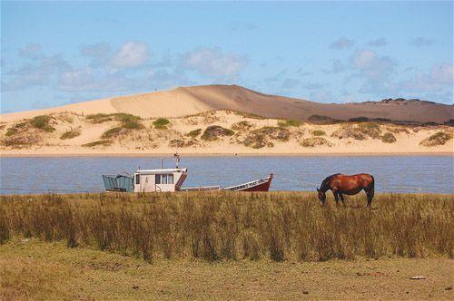 CºBuenaVista Panoramio LauraFerrari Top 5 destinos playeros en Rocha, Uruguay