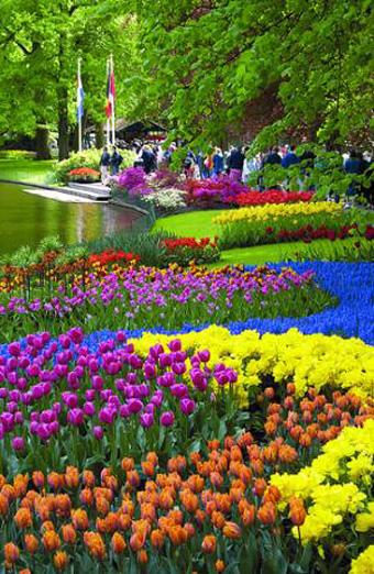 Keukenhof jardines - Jardines de tulipanes en holanda ...